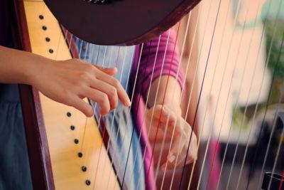 Roche Legal - Harp